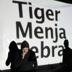 Despertador… Tiger Menja Zebra – Obrirè el teu cap per posar-hi flors
